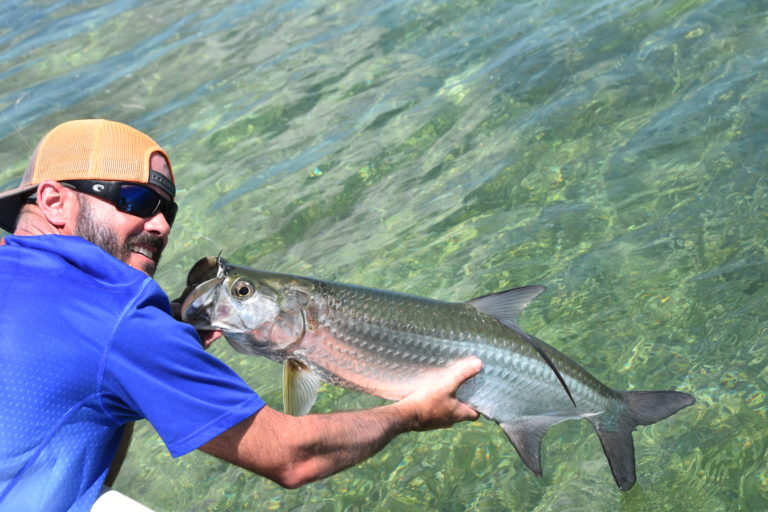 an angler poses with a juvinile tarpon over the crystal clear waters of the lower keys backcountry