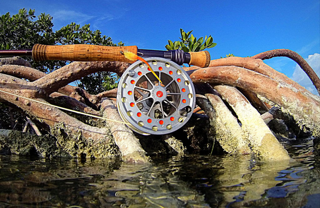 A lamson fly fishing reel sits on some mangrove roots in the backcountry of the Florida keys