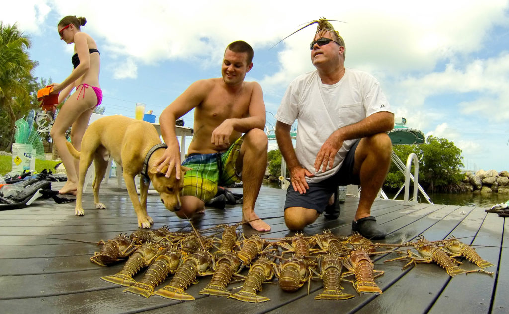 A happy family lays out their pile of freshly caught Florida keys lobster.