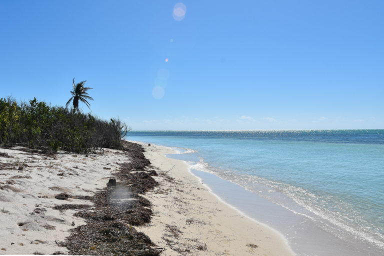 A bright sunny day shows the crystal clear Florida keys water meeting the sandy shores of a secluded island off of the Florida keys