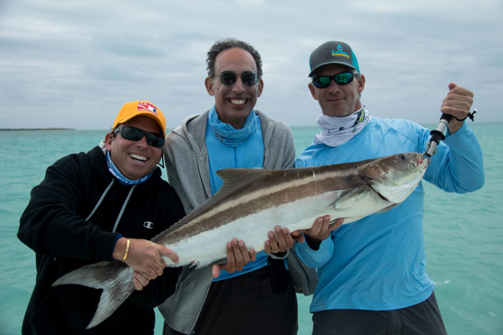 A couple anglers try and hold up a nice 40lb cobia caught while fishing in the backcountry off of Key West