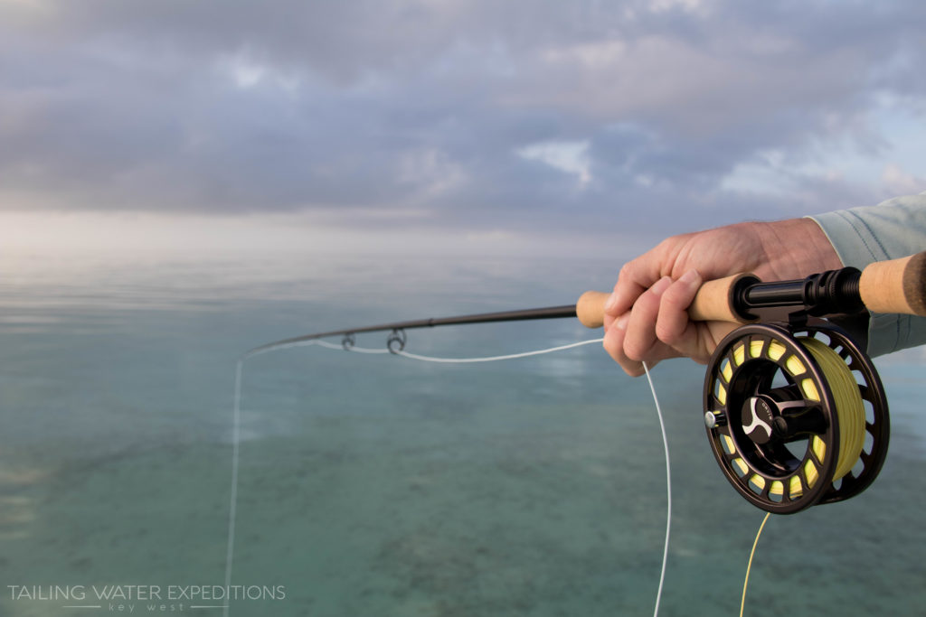 Fishing the flats in Key West on one of those glass calm days we always dream about.
