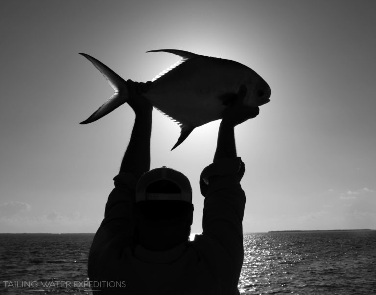 The holy grail of flats fishing here in the Keys an angler holds up his first permit!